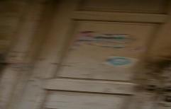 Flush Door by Namdhari Timber Traders