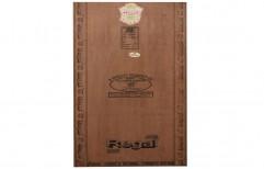 Flush Door by Shiva Plywood Company