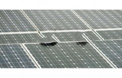 Monocrystalline Solar Panel by Nucifera Renewable Energy Systems
