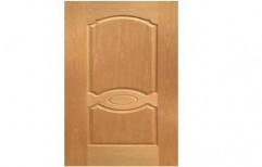 Panel Entrance Door   by Shubham Furniture & Aluminium