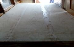 Plywood Doors by Vishwas Enterprise