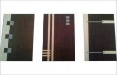 Flush Doors by Vishwa Mitter & Sons