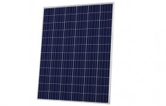 Solar PV Module (250W) by Easy Photovoltech Private Limited