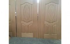 Wooden Skin Moulded Door      by Ganpati Wood Moulders