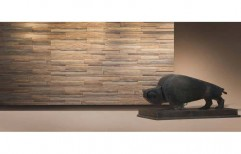 Wall Plank by Tanwar Interior