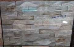 Wall Cladding by R R Trading Co