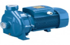 MMEW Monoblock Centrifugal Pump