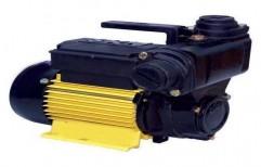 Single Phase Monoblock Pump   by S & P Enterprises