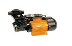 Single Phase Electric Domestic Pumps