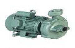 Single Phase Monoblock Pump   by Pushpendar Enterprises