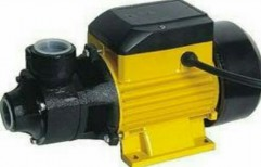 Domestic Water Pumps by Agarwal Electrical And Engineering Co.
