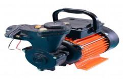 1 Hp Dora-50 CRI Domestic Pump, 2 Kg