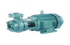 Domestic Monoblock Pump by R. K. Enterprises