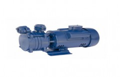 Domestic Water Motor Pump   by Bansal Trading Co.