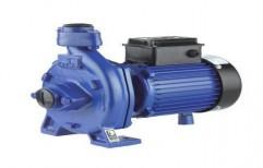 Kirlosakar Domestic Water Pump