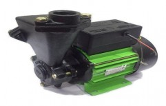0.1 - 1 hp Single Phase Domestic Water Pump