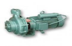 Centrifugal Mono Block Pump     by Panesar Enterprises