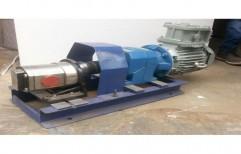 SS Gear Pump by Creative Engineers