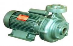 Akassh Electric 1hp Monoblock Centrifugal Pump