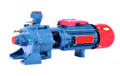 Double Stage Centrifugal Pump by Pomoi Steels