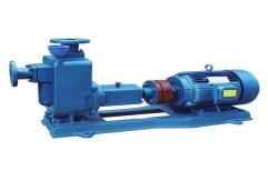 Slurry Pumps by Plastico Pumps