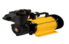 Single Phase Monoblock Pump   by Pumps Care
