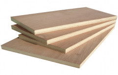 MR Grade Flush Door   by Gold Wood Industries