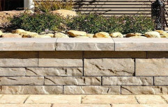 Stone Wall Cladding by Riddhi Marketing