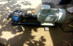 Flange Type Gear Pump With Motor by Industrial Pumps & Instrument Company