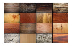 Wood Laminates by Utkal Ply And Glass