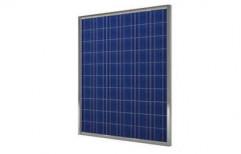 Poly Crystalline Solar Panel by Sungoldtech Enterprises