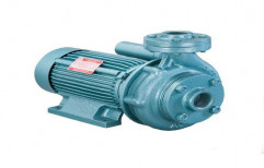 Single Phase Monoblock Pump   by Ankit Enterprises
