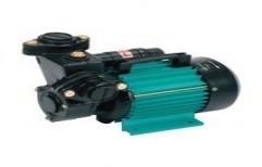 Single Phase Monoblock Pumps by Sizer Pumps & Motors