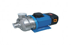 Stainless Steel Impeller Pump by Fivebro International Private Limited