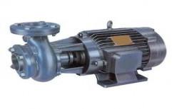 Agriculture Monoblock Pumps by Sizer Pumps & Motors