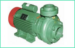 Centrifugal Monoblock Pumps by Shri Madhav Electricals Rewinding Works