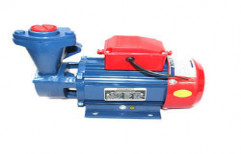 Crompton Mini Monoblock Pump by Darbari Lal Jain & Sons