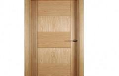 Sintex Flush Doors by Baveja Plywood House