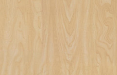 Signature Laminate Sheet by Hanuman Glass Plywood And Hardware