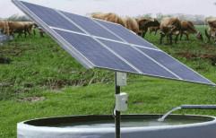 Solar Pumping system by Solar Sankalp