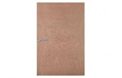 Ambika  Plywood Door by Gujrat Sales