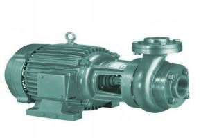 Domestic Water Pump by J.P. Enterprise