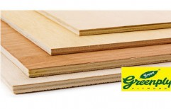 Greenply Plywood by Ply Point Interiors