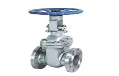 Industrial Gate Valve by Hindustan Reliability Services