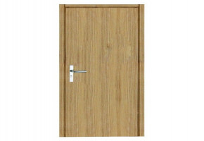 PVC Flush Door by Tanvi Enterprises