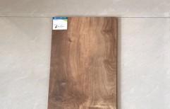 Teak Wood Flooring by Rana Aluminium & Pvc