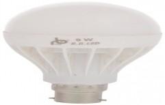 9 Watt RB LED Bulb by RB Solar Energy