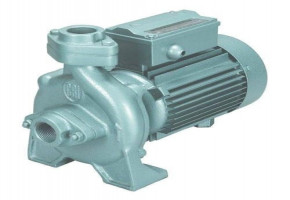 Cri 1 Hp Domestic Water Pump by CRI Pumps Private Limited