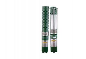 CRI Domestic Booster Pump, 2 -3 PUMPS