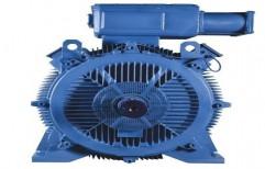 BBL Crompton Standard Motors by Makharia Machineries Pvt. Ltd.